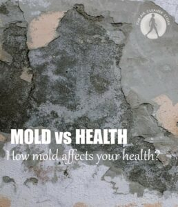 Mold Affects Your Health