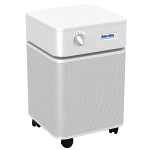The air cleaner store