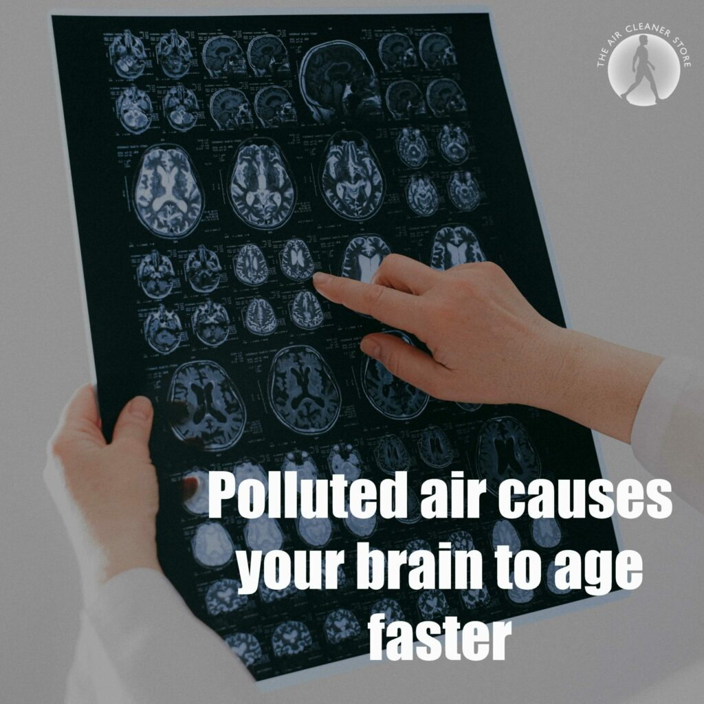 polluted-air-vs-your-brain