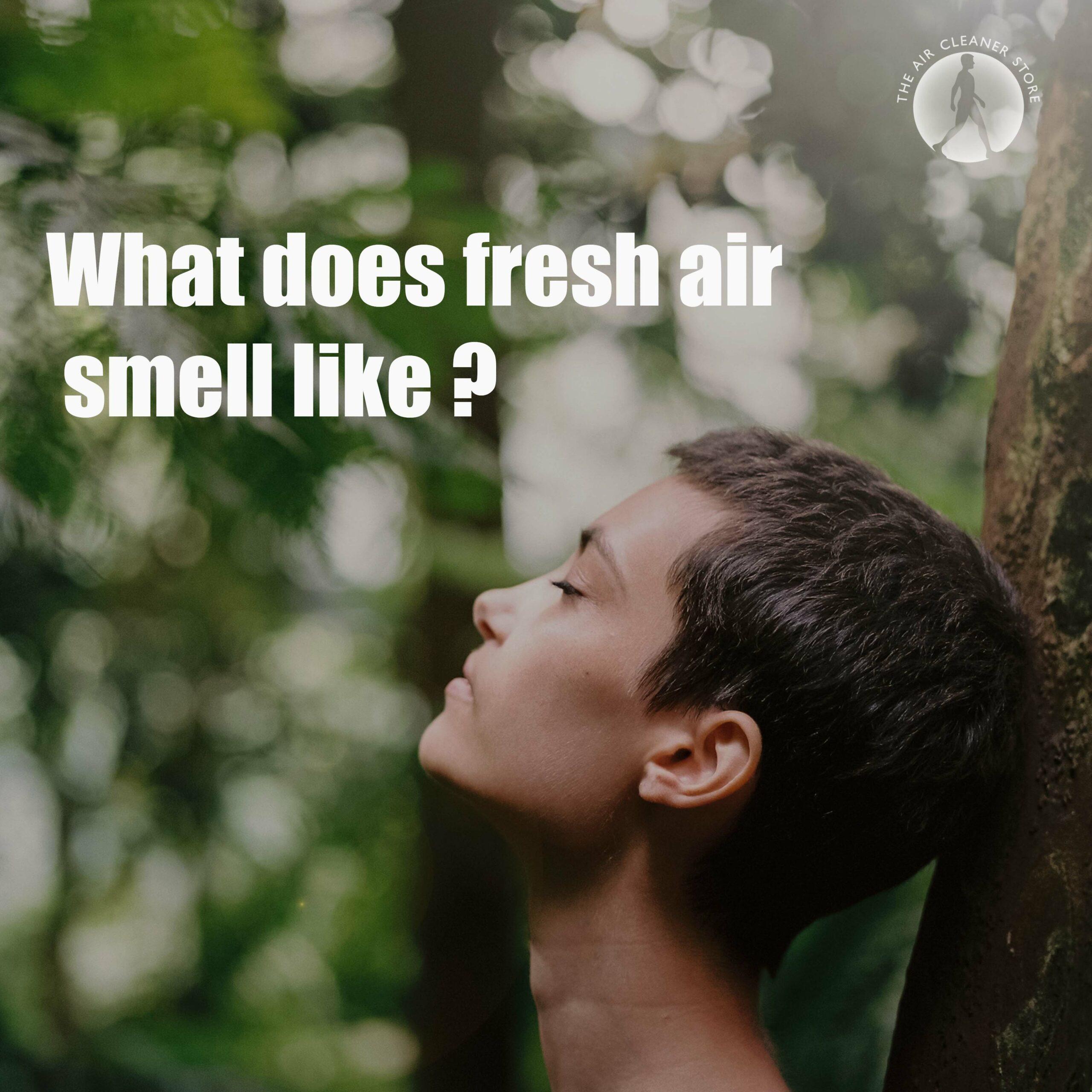 fresh air smell