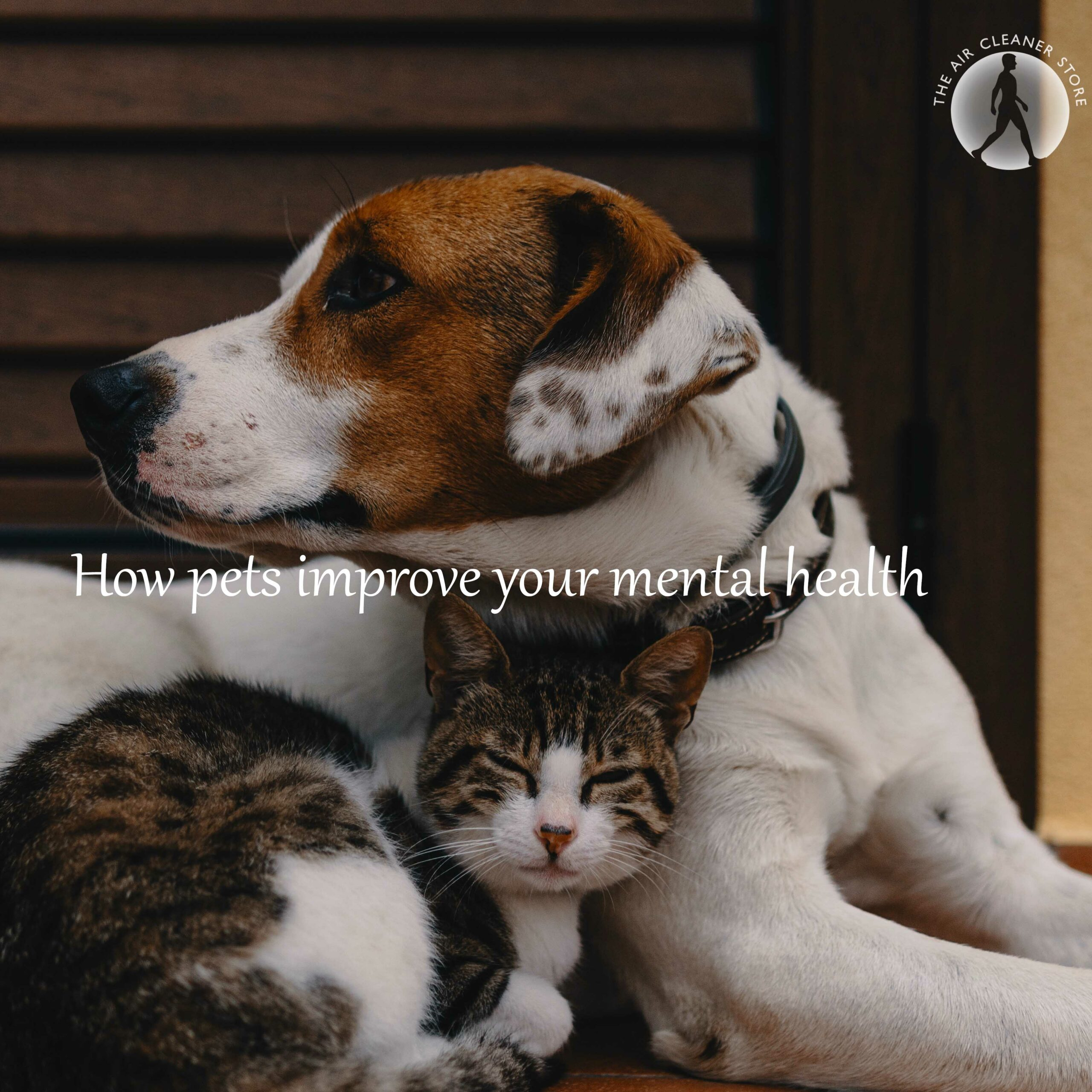 improve-your-mental-health